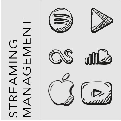 Streaming Management, streaming management, Spotify Management, Blackbirdpunk Consulting, Digital Consulting for the Music Industry, music industry digital entertainment agency, Berlin, berlin, digital, work digital, freelancer digital music industry