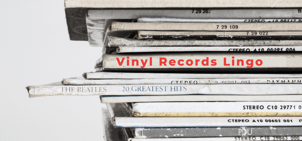 Vinyl Records Lingo, Vinyl Vocabulary, Vinyl Records Lingo, how to talk vinyl, vinyl vocabulary, important vinyl words, BlackbirdPunk Consulting, Digital Consulting for the Music Industry, music industry digital entertainment agency, Berlin, berlin, digital, work digital, freelancer digital music industry