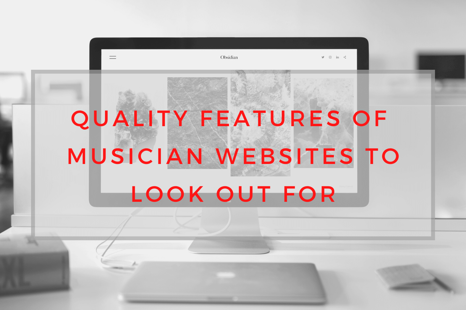 Quality features of musician websites, saralenaprobst.com, Blog about Music, Music Blog, BlackbirdPunk, Blackbirdpunk Consulting, Digital Consulting for the Music Industry, music industry digital entertainment agency, Berlin, berlin, digital, work digital, freelancer digital music industry