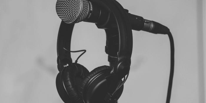 Artist Manager, BlackbirdPunk Consulting, Digital Consulting for the Music Industry, music industry digital entertainment agency, Berlin, berlin, digital, work digital, freelancer digital music industry